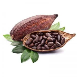 cacao-boon-800x800