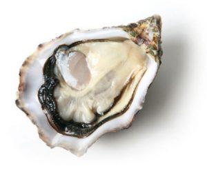huitre-krystale1